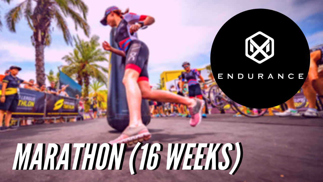 551 MX Endurance 16 Week Marathon Plan